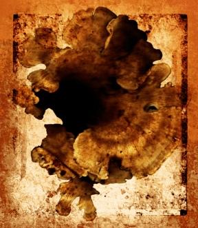 rotten canvas